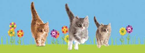 Animated Ruler - Animated Kittens 3D Bookmark - Ruler By Emotion Gallery