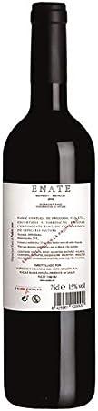 ENATE Merlot-Merlot - Añada 2016, Vino Tinto - D.O. Cabernet - 75cl - Vino Tinto de Amplio y Complejo Abanico Aromático - Recuerdos de Frutos Rojos y Notas Balsámicas y Especiadas
