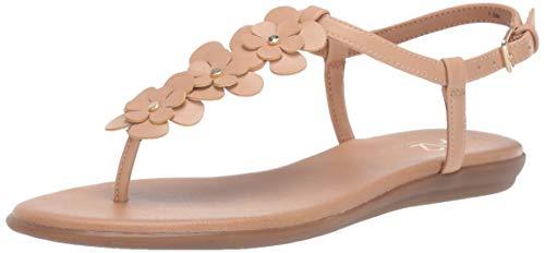 Aerosoles A2 Women's CHLASSY Date Flat Sandal Nude 8 M US ()