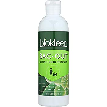 Amazon Biokleen Bac Out Stain Odor Remover Destroys Stains