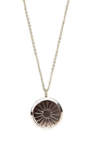 Essential Oils Stainless Steel Diffuser Necklace (Hypo-Allergenic) (Arrow Pendant) (Steel Pendant Collection Stainless)