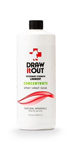 Draw It Out Veterinary Strength (Bigeloil Liquid)