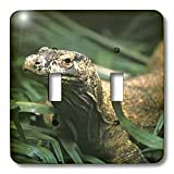 3dRose lsp_73146_2 Oceania, Indonesia, Komodo Dragon (Lizard)-As11 Mwe0235 Michele Westmorland Double Toggle Switch