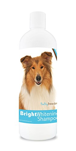 Healthy Breeds Dog Whitener Shampoo For Collie - For White, Lighter Fur – Over 150 Breeds – 12 Oz - With Oatmeal For Dry, Itchy, Sensitive, Skin – Moisturizes, Nourishes Coat