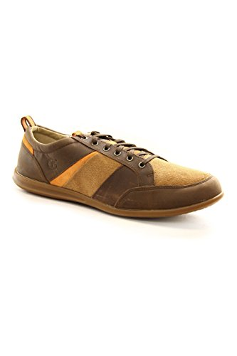 Timberland Burnettsville Oxford Brown A146R US14