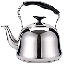 Teapot induction for Alpine cuisine tea kettle