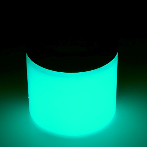 [Art 'N Glow Artist's Acrylic Glow In The Dark Paint with Charging Light, 4 Fluid Ounces, Neutral] (30 Second Costumes)