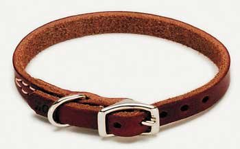 Coastal Pet Products DCP210310 Leather Latigo Dog Collar, 3/8 by 10-Inch