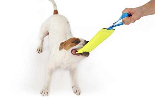 New Dog Bite Tug Toy - Extra Tough, Durable, Interactive Toys For Medium to Large Dogs by Bull Fit - Best For Tug of War, Fetch & Puppy Training! - Safe Fire Hose Dog Tug with Strong Handle, It Floats by Bull Fit (Image #8)