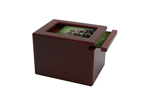 The 8 best pet urns with photo