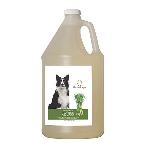 Hydrosurge Tea Tree Shampoo Lemongrass 1 Gallon