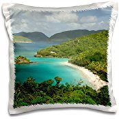 Bays - USVI, St. John, Trunk Bay, Virgin Islands NP - Cindy Miller Hopkins - 16x16 inch Pillow Case -