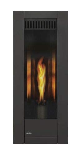 Napoleon Torch Gas Fireplace - Napoleon Torch Direct Vent NG Fireplace - Package 1