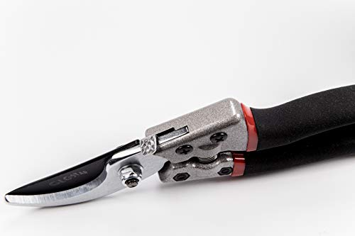 Professional Bypass Pruning Shears | Heavy Duty Garden Scissors with Non-Slip Handles | Garden Pruners, Clippers and Tree Trimmers with SK5 Sharp Blade | Bonus Gardening Gloves | Great as GlFT by GLC Star (Image #8)