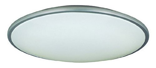 Lite Source LS-5412SS/WHT Pegeen 21-Inch Ceiling Flush Mount Lite, Satin Steel with White (Lite Source Satin Ceiling Lamp)