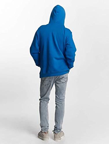 2c2d02d7ee75 Amazon.com: LRG Men's Lifted Script Pullover Hoody: Clothing