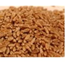 WHEATGRASS SEEDS (1KG) (Hard Winter Wheat Seeds) Brand: Sprout Master