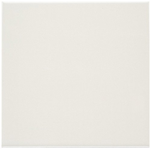 Dal-Tile 12181P2 #-PL22 Polaris Tile,, 13