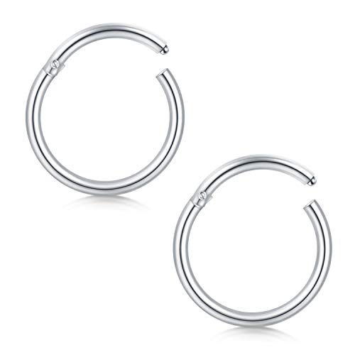 FECTAS 16G Cartilage Earrings Hoop Nose Rings Helix Daith Tragus Earring Hinged Clicker Segment Lip Septum Ring 8mm