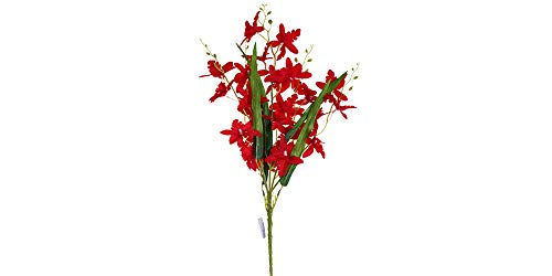 - Smart Sense Artificial Dark Red 21 inch Dancing Lady Orchid Liquid Illusion Silk Flower Arrangement in Single Stem(1 pc, Dark Red)