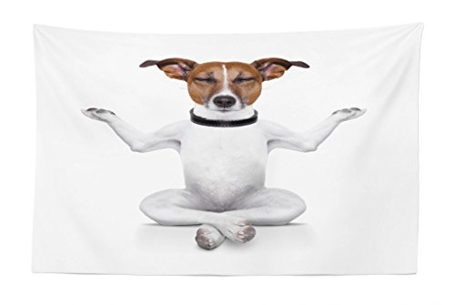 Lunarable Dog Lover Tapestry, Yoga Dog Sitting Relaxed with Closed Eyes Meditation Lifestyle Fitness Joy Comic, Fabric Wall Hanging Decor for Bedroom Living Room Dorm, 45