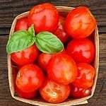 David's Garden Seeds Tomato Slicing Glacier D3140 (Red-Orange) 25 Organic Seeds