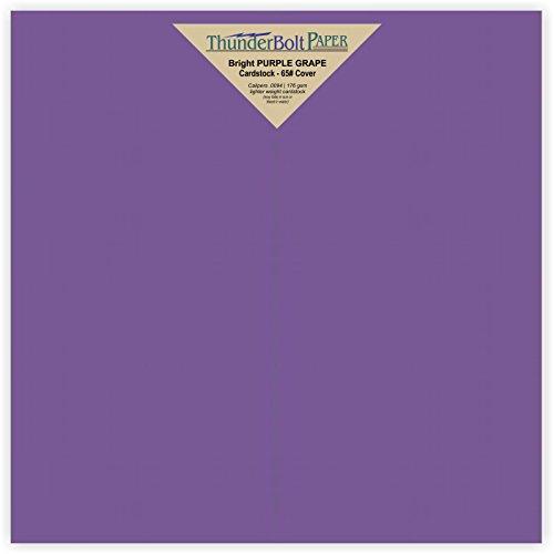 - 125 Bright Purple Grape 65# Cardstock Paper 9
