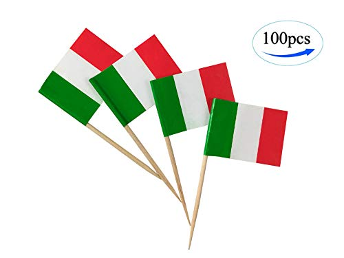 Italy Flag Italian Flags,100 Pcs Cupcake Toppers Flag, Country Toothpick Flag,Small Mini Stick flags Picks Party Decoration Celebration Cocktail Food Bar Cake Flags