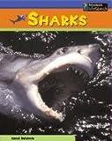 Sharks, Carol Baldwin, 1403409587