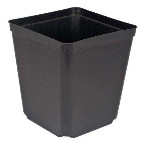 "5.5"" Square Nursery Pot, 2.3 quart, pack of 48"