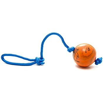 The Nero Ball Extreme Solid Rubber Dog Training Ball on Rope