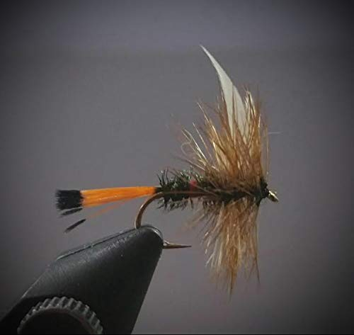 (1 Dozen - Royal Coachman - Dry Fly - Trout Fly Fishing Flies Lures Strong Fish Hooks for Trout)