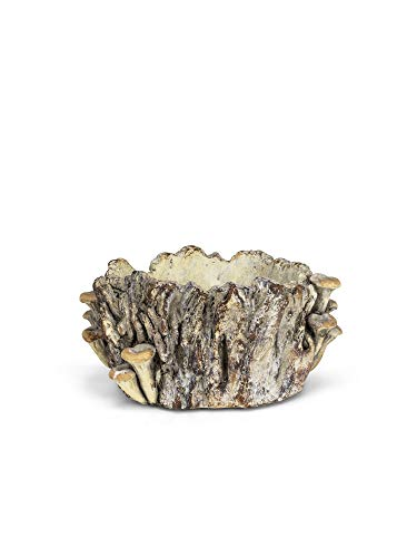 Abbott Collection 27-FORAGE-190 Rd Log Planter w/Mushrooms-6