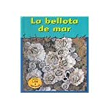 La Bellota de Mar, Lola M. Schaefer, 158810771X