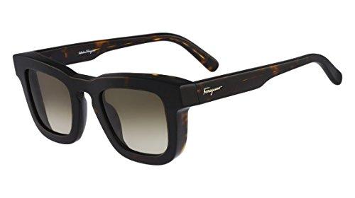 salvatore-ferragamo-sunglasses-sf771s-214-tortoise-47-25-145