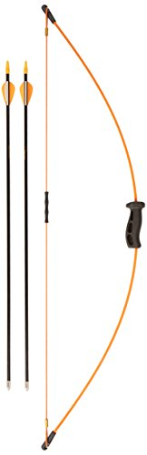 Bow Products : Bear Archery 1st Shot Bow Set