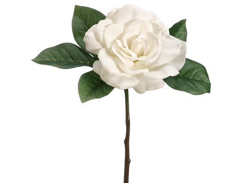 Afloral-Silk-Gardenia-Pick-in-Cream-11-Tall