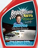 Rejuvenate Auto/Detail Magic Anti Fog Window Cleaner (2 oz)