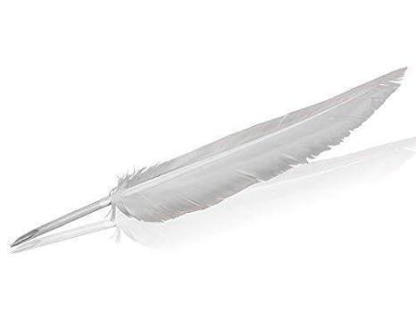 Pluma de caligrafía schreibfertig a medida, verdadera Ganso Blanco Muelle - Foro Traiani - 22 - 25 cm natural caligrafía lápiz - Muelle para de tinta: ...