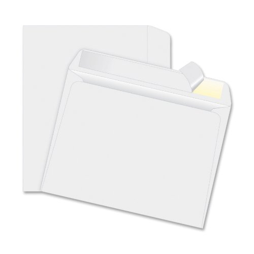 Quality Park R2860 Quality Park Tyvek Booklet Envelopes, Open Side, 9x12, White, 100/Box