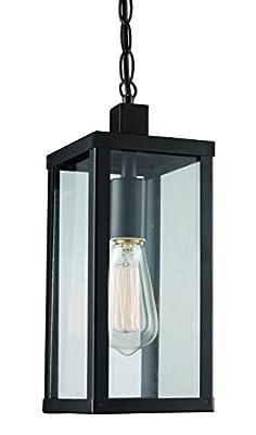 "Trans Globe Lighting 40756 BK Oxford Outdoor Black Industrial Hanging Lantern, 14.25"","