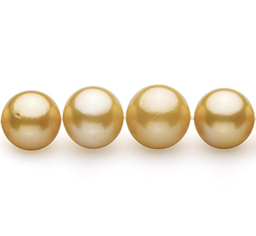 PearlsOnly - Or 11.53-15.2mm AAA+-qualité des Mers du Sud 585/1000 Or Jaune-Collier de perles