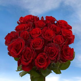 GlobalRose 8 Dozens of Fresh Cut Red Roses - Fresh Flowers For Birthdays, Weddings or Anniversary. by GlobalRose