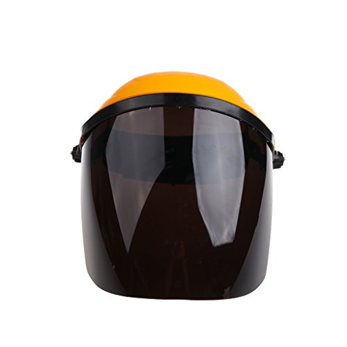 Prettyia All-Purpose Face Shield, Clear Polycarbonate Shield, Welding Headgear with Clear Visor Shields - Black (Bionic Shield Visor)