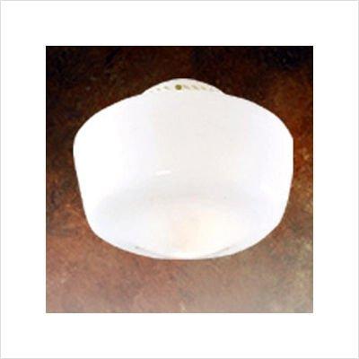 Hunter 22555 10-Inch Schoolhouse Globe - Opal