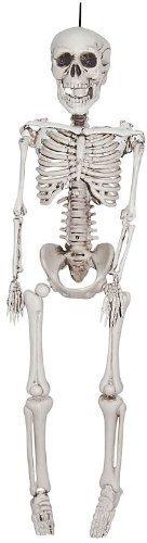 20 In (Halloween Skeletons)