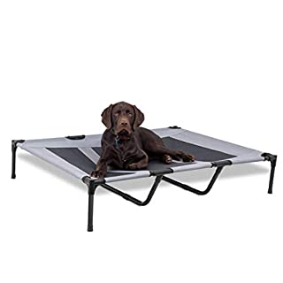 BIRDROCK HOME Mesh Dog Cot - 48 x 36 - Durable Elevated Dog Bed - Comfy Cool Breathable Mesh - Indoor or Outdoor Use - Large - Grey (48 x 36, Grey)