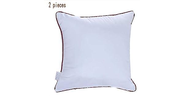 Amazon.com: Zuen - Juego de 2 almohadas de lujo, relleno de ...