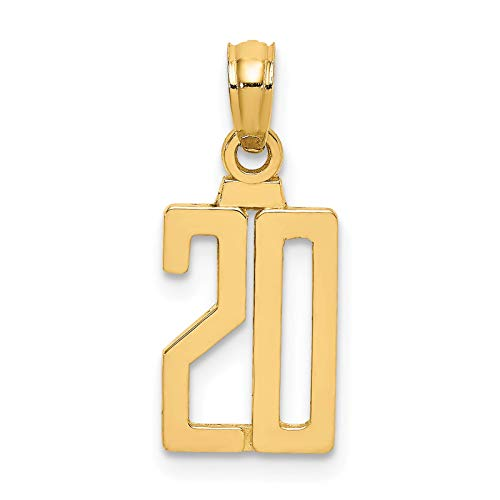 14K Yellow Gold Polished Block Style Number '20' Charm Pendant (20' Stamp Jewelry)