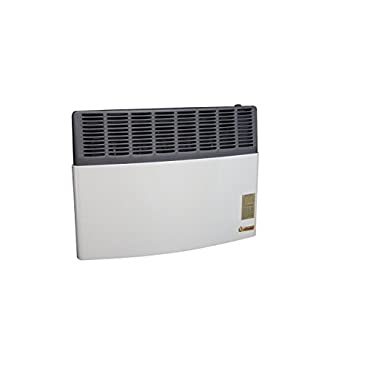 US Stove AGDV20L Ashley Direct Vent 17,000 BTU Propane Gas Heater